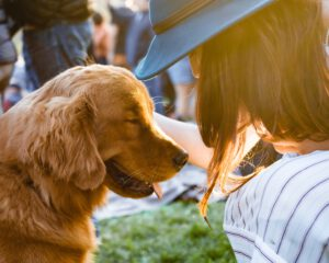 Ile kosztuje kremacja psa??